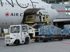 Flight AC7214 took off from Montréal carrying almost 22,000 kilograms of freight to Amsterdam, which included fresh flowers and herbs from Bogotá in the newly transformed cabin and asparagus from Lima in the cargo hold.