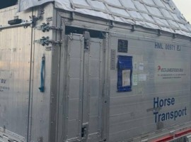 Two Andalusian stud horses and one Orlov Trotter horse, weighing over 1,500 kg in total, were comfortably positioned in a special horse container which meets all IATA LAR container requirements and guarantees the well-being of the animals during the whole flight.
