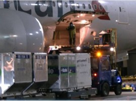 In close collaboration with pharmaceutical and cargo partners, the airline received the shipment by truck at Chicago O'Hare International Airport (ORD) and loaded the shipment onto a Boeing 777-200 aircraft flying to Miami International Airport (MIA).