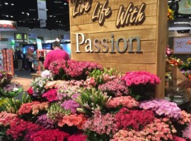 Air Transport Services Group announced that its subsidiary, TriFactor Solutions, has been awarded a contract to design and install a multi-divert sortation for Passion Growers of Miami.