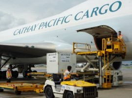 The partnership will give the organisation and its 130 nonprofit humanitarian relief partners access to Cathay Pacific's extensive Asia network from its 16 passenger and cargo ports in Canada, the US, and Mexico.