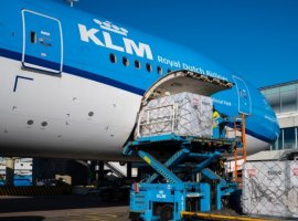 SkyCell, along with KLM, and UPS delivered 6541 kg of pneumococcal vaccines from Tokyo and Osaka to Frankfurt.