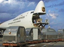 We find answers for the question: will rapid digitalisation in the freight industry make forwarders redundant in air cargo?