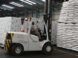 The company will be responsible for majority of WFP's operations for Cameroon, Chad, the Central African Republic, Nigeria and Congo Brazzaville.