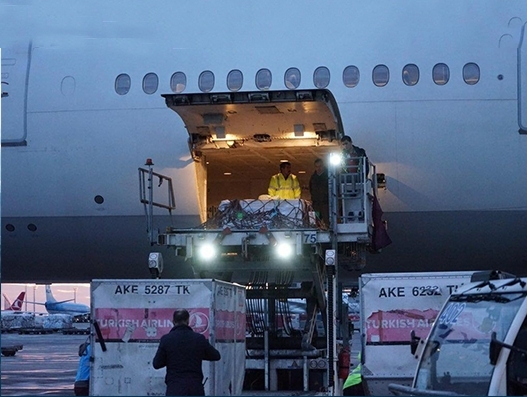 Turkish Airlines helps bring back missing pieces of the Gypsy Girl Mosaic