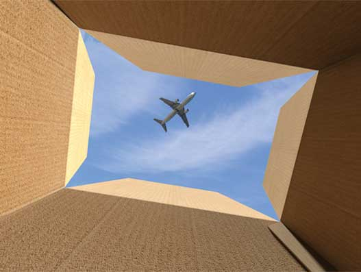 Air cargo makes it happen sustainably