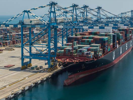 Abu Dhabi ports set a new annual cargo-volume record in 2015