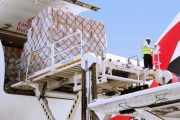 FROM MAGAZINE: Middle East air cargo market: Resilience in tough times
